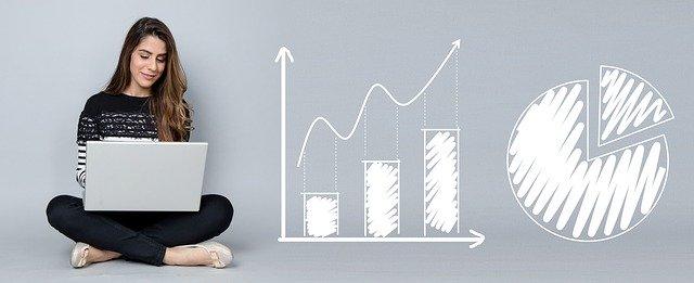 software demo rapid business information organizer